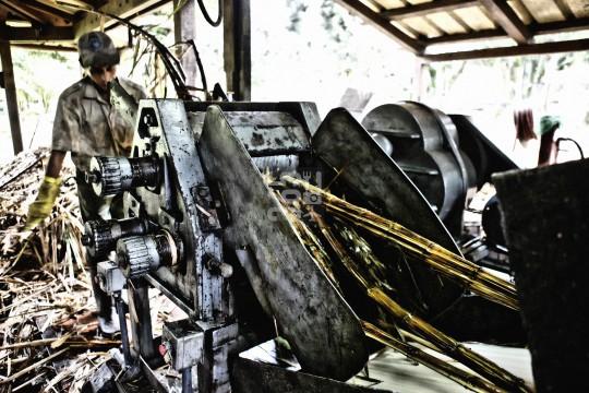 St. Aubin, sugar cane processing